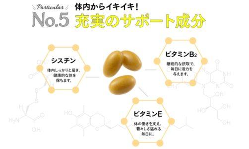 肝臓ケアサプリメント レバリズム 5つの効果(成分)_5